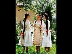 Hungarian traditional customs and music