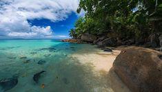 Seszele, Wyspa Mahe, Plaża, Kamienie, Palmy