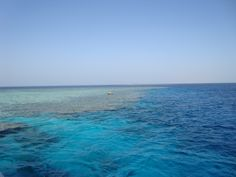 Snorkeling! Red Sea (Egypt) Just amazing