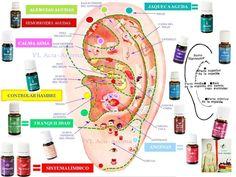 ACEITES ESENCIALES Y AURICULOTERAPIA | Acu-Aroma-Terapias