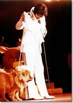 Elvis and his dog, Getlow
