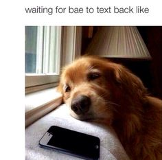 Waiting for bae to text back like