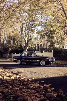 IMGP4517 by James Burrell, via Flickr