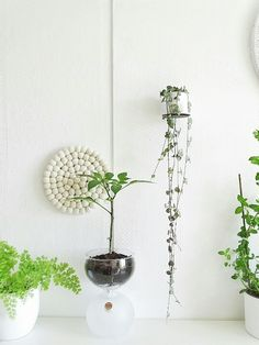 On the Mammilade | n-side of life: Covered May Table | With plants, gypsophila, Filzkugeln and DIY napkin rings & 4 other decorative ideas with Filzkugel-coasters [Part 1 of 2] If Nice is practical and Practical beautiful