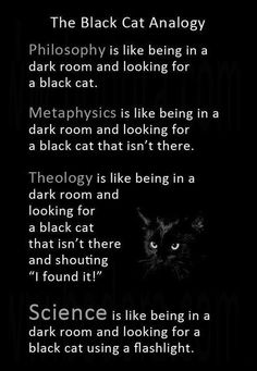 NO. Theology is being in a dark room and remembering the cat was there before the lights went out, being reminded that there is a cat and feeling the presence of the cat using those of your senses that science is ignoring. Then the lights come back on.