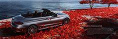 https://flic.kr/p/NmRgt4 | Mercedes-Benz C Klasse Cabriolet; 2015_2