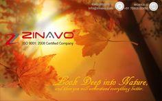 #innovative #affordable web design and development company. #zinavo(goo.gl/ey8Q7b)