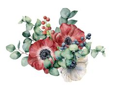 Watercolor Bouquet With Anemone, Eucalyptus And Berries. Hand Painted Red And White Flowers, Green Leaves, Berries Stock Illustration - Illustration of invitation, eucalyptus: 123068743 Anemone Flower, Flower Art, Watercolor Flowers, Watercolor Paintings, Watercolor Portraits, Watercolor Landscape, Abstract Paintings, Illustration Blume, Red And White Flowers