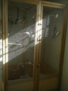 How to: Mini Indoor Aviary! - Talk Budgies Forums