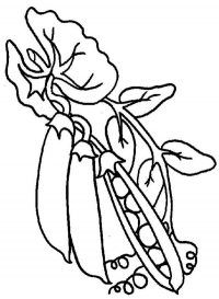Free Peas Coloring Pages Printable Free Coloring Sheets Vegetable Coloring Pages Coloring Pages For Kids Coloring Pages