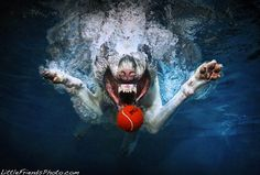 Incredible Underwater Dogs by Seth Casteel
