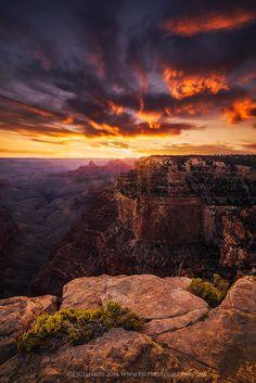 """Royal Skies"" - Grand Canyon National Park, Arizona - by Peter Coskun Grand Canyon National Park, National Parks, Beautiful Sunset, Beautiful Places, Cool Pictures, Beautiful Pictures, Quelques Photos, Best Photographers, Belle Photo"