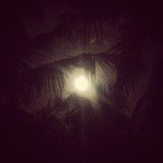 Um die Kraft des Mondes nutzen und deine Wünsche zu manifestieren kannst du ein magisches Ritual für Neumond und Vollmond für dich vollziehen.