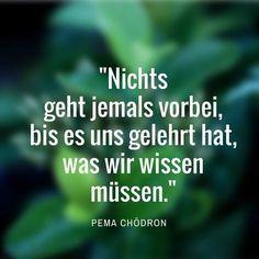 15 Zitate, die Deine Weltsicht verändern! Lass Dich inspirieren von food4spirit.de #zitate #quote #lebensweisheit