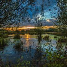 Sunset by Thomas Gawel