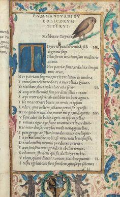 Aldus Manutius, inventor of italics......(Grolier Club, NYC)