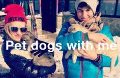 pet dogs with me #randomthingswedo