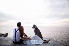 Когда третий — не лишний!  На свадебную прогулку по берегу Горьковского моря в Нижегородской области ребята взяли с собой Тора — собаку невесты. Он помог сделать веселые и вдохновляющие снимки. Конечно, пришлось набраться терпения, ведь такие псы любят порезвиться, и было непросто заставить его сидеть на одном месте. Но фотографу это удалось!  А еще на фотосете березы, красивая осень и умиротворение невероятное... Полная серия ждет вас на ✔nizhnynovgorod.prosvadbu.ru.  Фото: Евгений Шамшура…