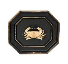 Taxidermy Crab in Double Frame 20th Century  $55.00
