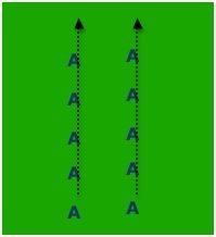 This 2 line warmup can also be used for conditioning your soccer players. This is a commonly used team warmup, and all teams should warm up as a unit, in a well organized fashion Soccer Warm Up Drills, Soccer Warm Ups, Soccer Practice, Soccer Coaching, Soccer Training, Soccer Players, Football Team, Shin Splints, Line