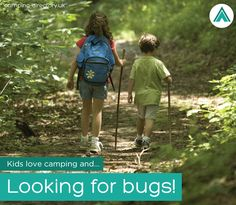 Go #camping this #halfterm & conduct your own #bughunt! :-) #Camspites #FamilyHolidays #UK #Outdoors