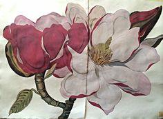 sarah graham botanical artist - Google Search