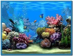 Aquarium Screensaver Freeware Windows 7 Moving Wallpapers Screensavers Desktop Backgrounds Animated