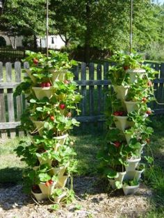 12-inch Stacking Planters - stacked and stacked and stacked for a strawberry tower. Love!