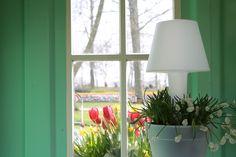 """Binnenin ons """"Amsterdamse huisje"""" staat een prachtige Elho Pure Twilight pot, gecombineerd met witte druifjes en rode tulpen buiten. 's Avonds licht de pot draadloos op!"""