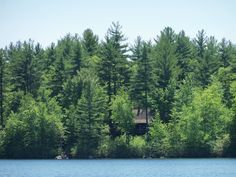 A photo of a house in the woods on Bunganut Lake in Lyman, Maine (5-20-12).