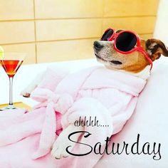 Woo hoooo happy Saturday boss babes and Dudes. The sun is out #lusciousbossbabes #saturday #sunisout