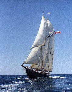 Bluenose II I'e been on this baby! Canadian History, Boat Stuff, Speed Boats, Wooden Boats, Tall Ships, Water Crafts, Nova Scotia, Fishing Boats, Sailboat