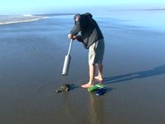Clam digging is great fun and tasty too!