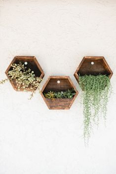 Beijos Reclaimed Shelves and Planters //interior design inspiration //natural plantings // interior plants to lift your mood Hexagon Shelves, Honeycomb Shelves, Decorative Shelves, Diy Home Decor, Room Decor, Wall Decor, Regal Design, Interior Plants, Interior Design