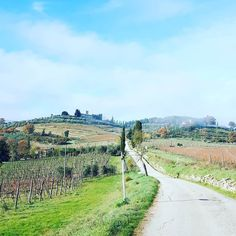 Road to Castle of Colognole at Greve in Chianti #chiantilife #love #picoftheday #countryside  #countryroads #tuscany . We  Chianti #wonderful #view #place #placetobe #art #instadaily #instacool #instalove #instamood #instatravel #instagood #chiantilovers #ilovetuscany