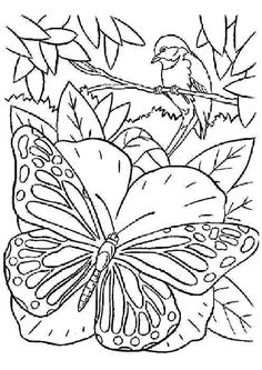 Belle image à colorier d'un papillon avec un oiseau sur une branche
