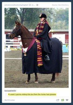 LOL THAT HORSE THO