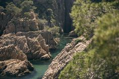 Hike to a magical cove and snorkel along small islands. A one-of-a-kind experience combining the beauty of Costa Brava's land and clear seas. Hiking Routes, Marine Reserves, Pine Forest, Enjoying The Sun, Small Island, Snorkeling, Habitats, Kayaking, Trip Advisor