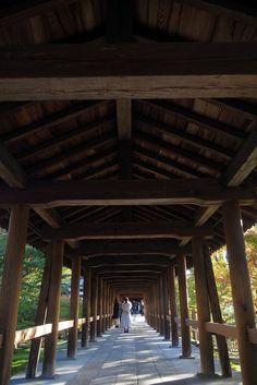 Osaka, Kyoto, Fushimi Inari Taisha, Statues, House Styles, Travel, Orange Door, Buddhism, Viajes