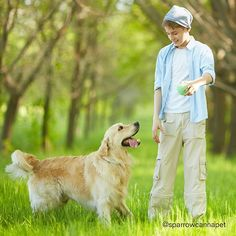 Worried about dog safety? Monitor real-time environmental temperature and set a temperature alarm to be sure your pet is safe. Love Matters, Dog Safety, Animal Protection, Dog Life, Your Pet, Dog Lovers, Labrador Retriever, Pets, Instagram