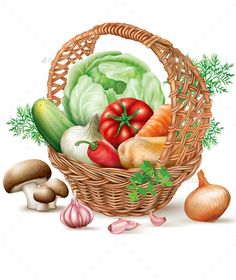 Buy Basket of Different Vegetables by dracozlat on GraphicRiver. Different vegetables in brown wicker basket. L'art Du Fruit, Fruit Art, Fruit And Veg, Vegetable Basket, Vegetable Stock, Different Vegetables, Food Illustrations, Clipart, Food Art