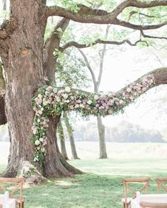 """Purple Wedding Flowers Tree Branch Wedding Arbor with Purple, Pink, and White Flowers - On the hunt for something to anchor your ceremony? Why not consider an arch. The lovely curve adds softness while the sides frame you while you say your """"I do""""s. Wedding Ceremony Ideas, Ceremony Arch, Tree Wedding, Outdoor Ceremony, Wedding Photos, Wedding Arches, Wedding Ceremonies, Outdoor Weddings, Arbors For Weddings"""