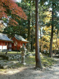 Tamukeyama Hachimangu Shrine (Nara, Japan) on TripAdvisor: Address, Phone Number, Reviews