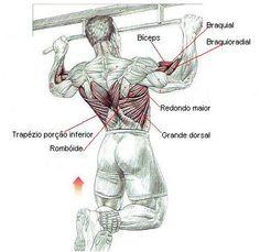 Barra Fixa - Exercício para costas