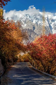 Autumn In Hunza