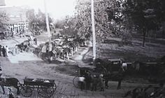 """Oxen on Collierville's Town Square 1800's. From """"Old Collierville"""" on Facebook"""