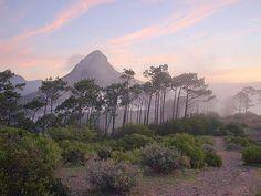 Lions Head, Cape Town, South Africa, BelAfrique your personal travel planner - www.BelAfrique.com