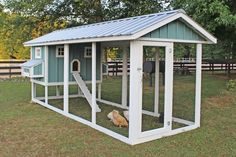 Backyard Chicken Product: Chicken Coops - American Coop w/12' Run (14 chickens) - from My Pet Chicken