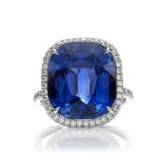 Harry Winston Sapphire Engagement Ring with micropave halo