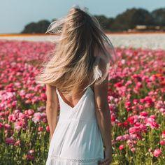10 Hacks for Healthier Hair Carlsbad Flower Fields, Blonde Hair Inspiration, No Heat Hairstyles, Oily Hair, Split Ends, French Braid, Great Hair, Hair Ties, Hair Hacks